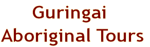 Exciting and friendly tours of the traditional Guringai Aboriginal land